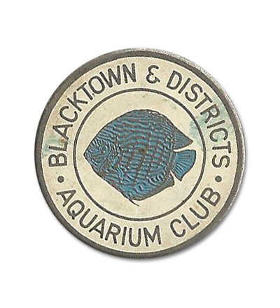 blacktown-S